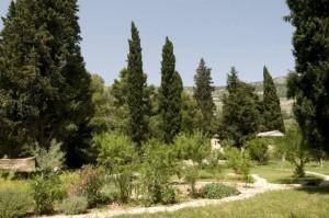 TZG-KAštela-Biblijski-vrt